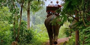Таиланд упростил правила въезда