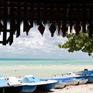 Cuba_ostrov_Cayo_Coco_4