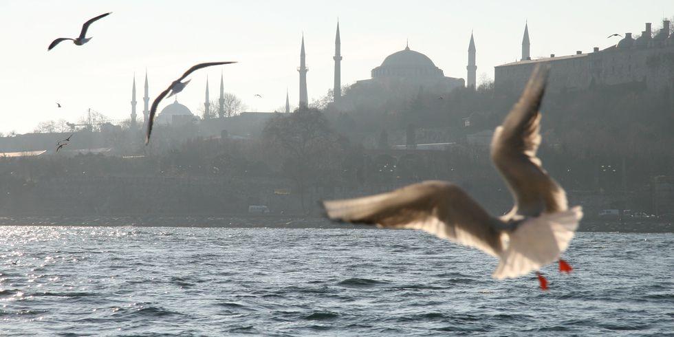 Новый Год в Стамбуле. Сказочное путешествие № 204