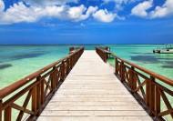 """С 8 по 15 октября доминиканский Barceló Bávaro Beach 5* приглашает на """"Неделю холостяков"""""""